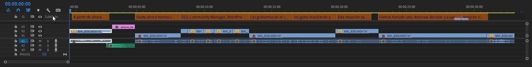 Subtítulos en Premiere Pro