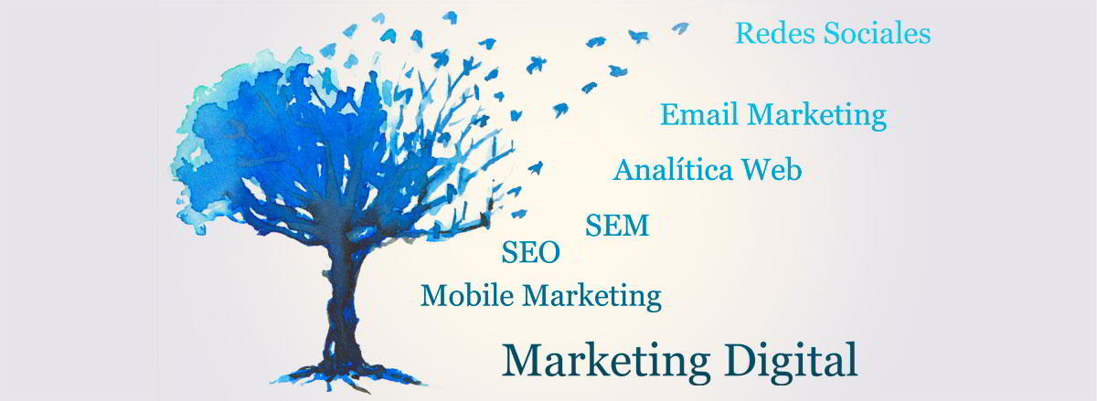 Planes de marketing digital